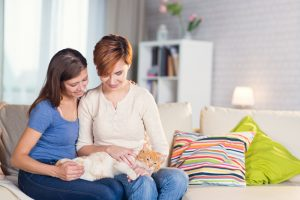 Making a will: what would happen to your pet in the event of your death?